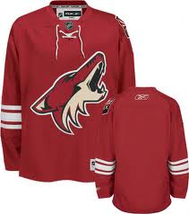 NHL Phoenix Coyotes Blank Red Jersey